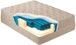 Convert Sleep Number Air Bed to Tube Waterbed With Free Flow Tubes ...