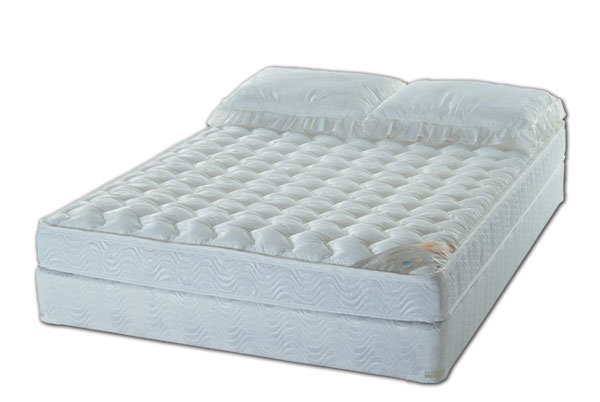 Plushtop Semi Motion Bladder Softside Waterbed Mattress