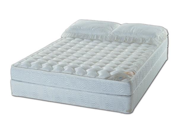 Plush Top Softside Waterbed Mattress