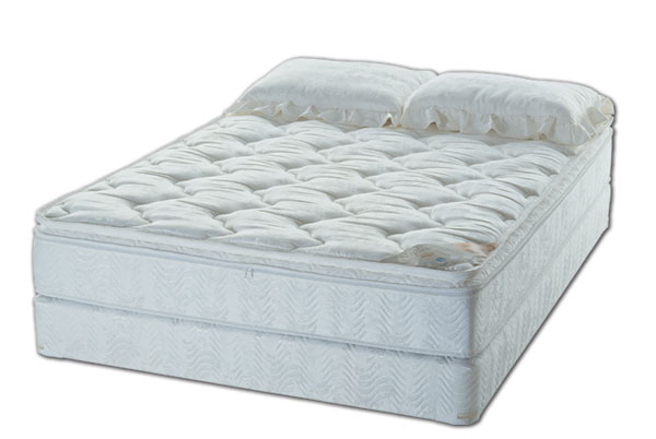 Softside Waterbeds Pillow Top With Waveless Mattress